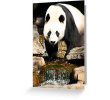 Wang Wang Greeting Card