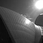 Sails in the Sun 2 by Andrew Wilson