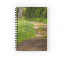 Fox out for a walk Spiral Notebook