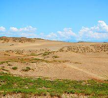 Suba Sand Dunes in Ilocos Norte, Philippines by walterericsy