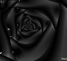 Black Velvet by ArtistByDesign