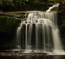 Walden Beck, West Burton, Yorkshire Dales by Miffy