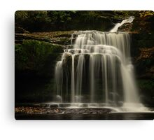 Walden Beck, West Burton, Yorkshire Dales Canvas Print