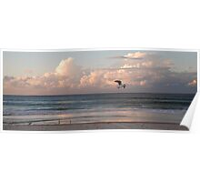 Six seagulls enjoy Kirra beach Poster