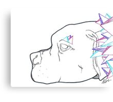 Dog Crystals Canvas Print