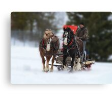 Sleigh ride delight Canvas Print