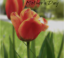 Happy Mother's Day by Shelly Harris