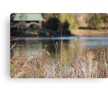 Simplistic in Nature Canvas Print