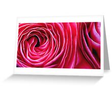 Around a Ranunculus Greeting Card