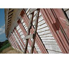 Robainha Tobacco Plantation - Cuba Photographic Print