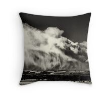 A reminder of winter Throw Pillow