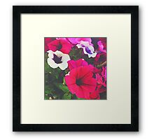 Small World Flowers Framed Print