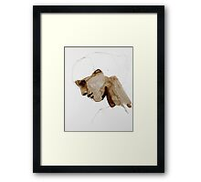 Seated In the Front Row Framed Print