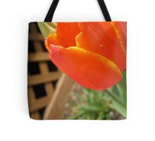 Sunfire's Goblet Tote Bag