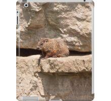 Hog On A Ledge iPad Case/Skin