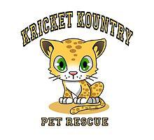 Kricket Kountry Pet Rescue by Kricket-Kountry