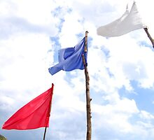 Red, blue and white beach flags. by walterericsy