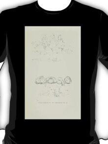 De Lebris Prose and Verse Tomson Hugh and Kate Greenaway 1909 0127 Pencil Sketches 3 T-Shirt
