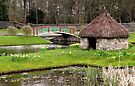 Thatched Hut and Bridge by Carol Bleasdale
