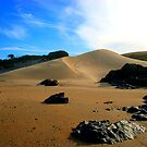 Transkei Dunes by Robbie Labanowski