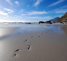 Footprints in the sand by Neil  Bradfield