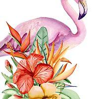 Flamingo by JuliaBadeeva