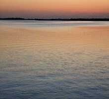 James Island Sunset by g richard anderson