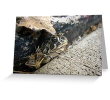 Frog in the Crack Greeting Card