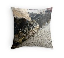 Frog in the Crack Throw Pillow