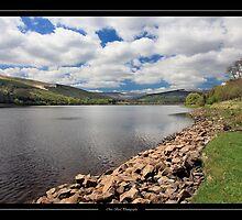 The Placid Lake by Chris Bird