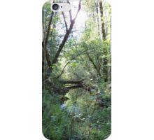 Forest Stream iPhone Case/Skin