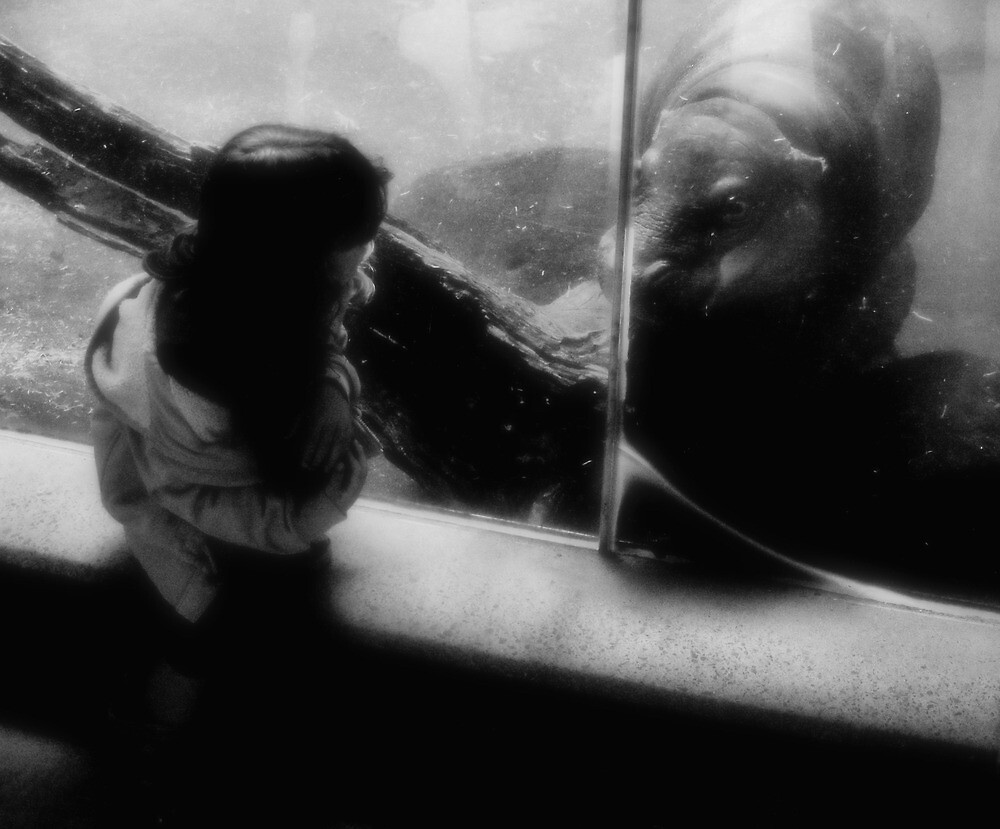 Girl and Hippo by Andrew  Makowiecki