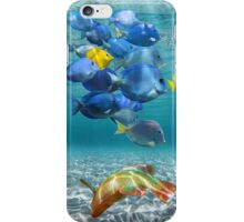 School of colorful fish iPhone Case/Skin