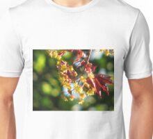 Acer platanoides 'Crimson King' Unisex T-Shirt