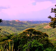 El Valle, Panama Countryside by Al Bourassa