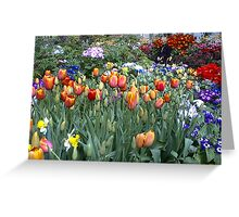 Flowers -Winter gardens Auckland Greeting Card