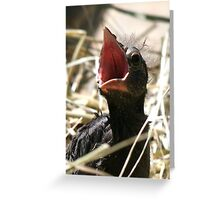 Are You My Mommy? Greeting Card