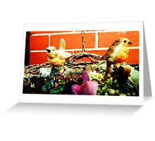Little Bird, Little Bird.... Greeting Card