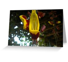 dangling flower Greeting Card