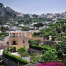 Isle of Capri by Laura Cooper