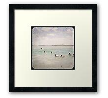 Pelicans TTV Framed Print