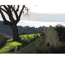 Sunstone Winery Photographic Print