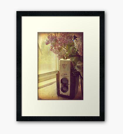 My Argus Framed Print
