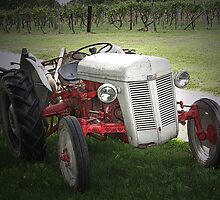 Tractor In The Vineyard by Sherry Graddy