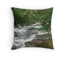 Rippling River Throw Pillow