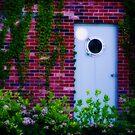 Portal by Carrie Bonham