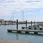 Monroe Harbor Docks by reindeer