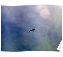 Swallowtail Scavenger Poster