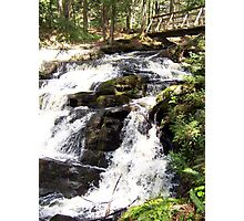 The Falls in the Forest Photographic Print