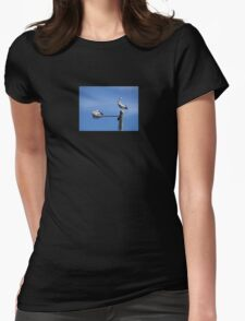 Pelican Composition - Pelicans Sticker Greeting Card T-Shirt